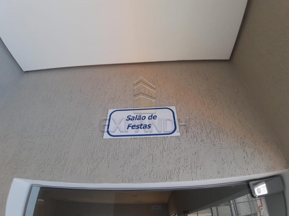 Alugar Apartamentos / Padrão em Sertãozinho apenas R$ 450,00 - Foto 12