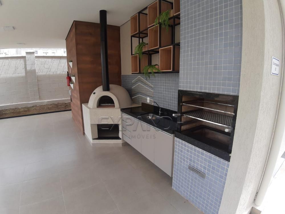Alugar Apartamentos / Padrão em Sertãozinho apenas R$ 450,00 - Foto 13