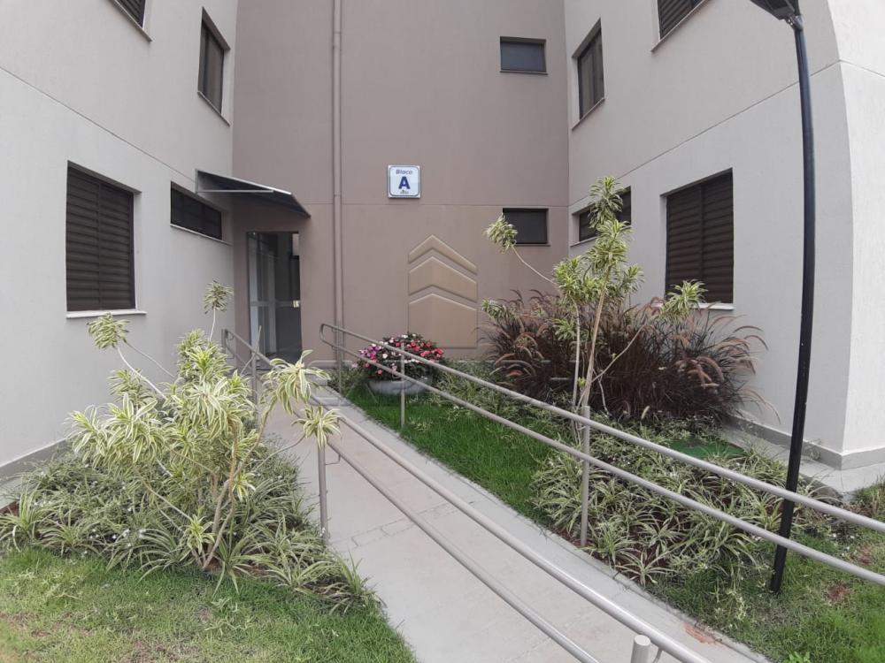 Alugar Apartamentos / Padrão em Sertãozinho apenas R$ 450,00 - Foto 16