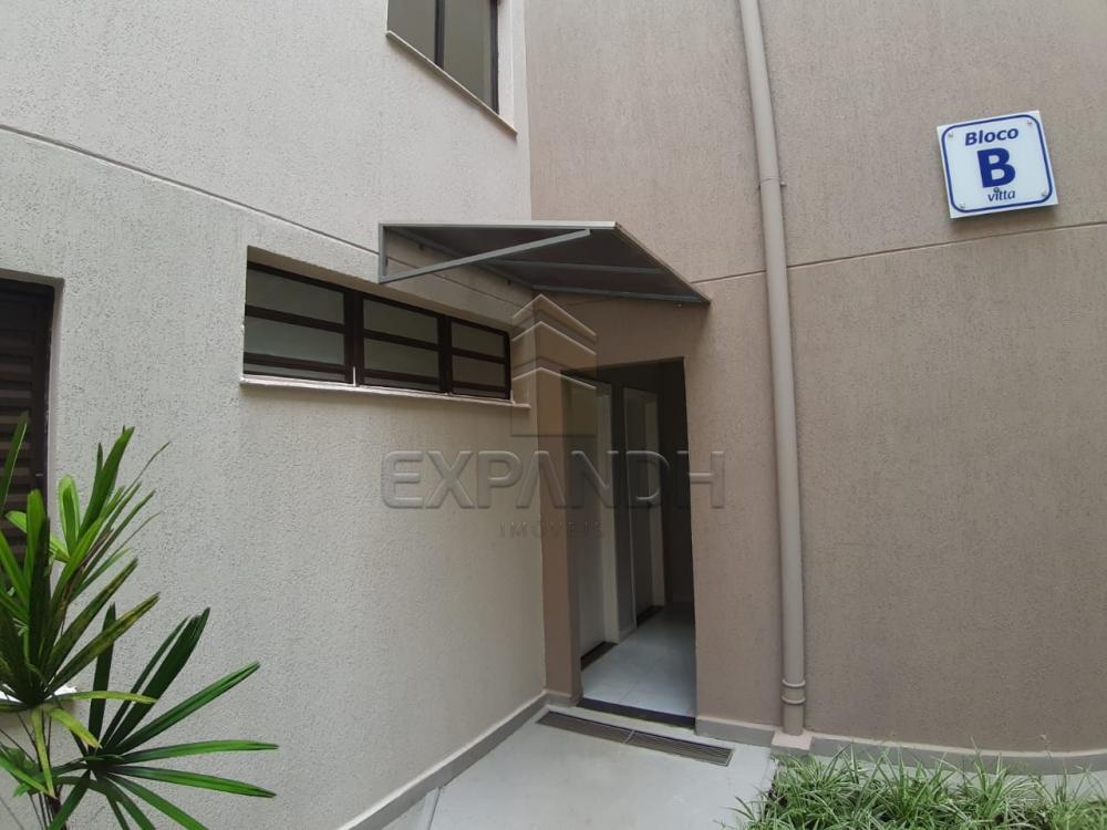 Alugar Apartamentos / Padrão em Sertãozinho apenas R$ 450,00 - Foto 21