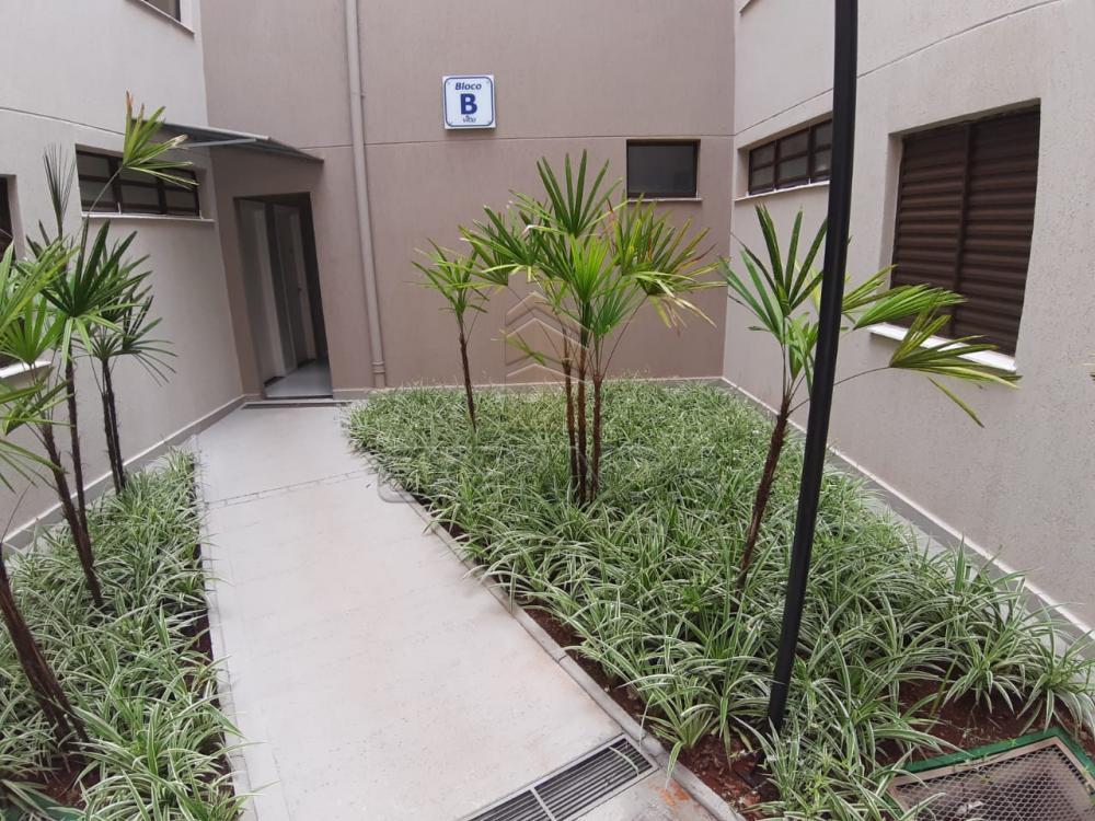 Alugar Apartamentos / Padrão em Sertãozinho apenas R$ 450,00 - Foto 22