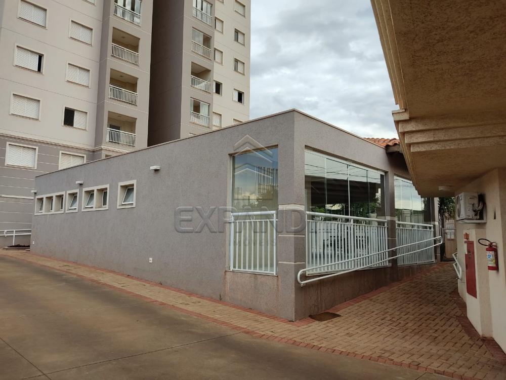 Comprar Apartamentos / Padrão em Sertãozinho apenas R$ 330.000,00 - Foto 2