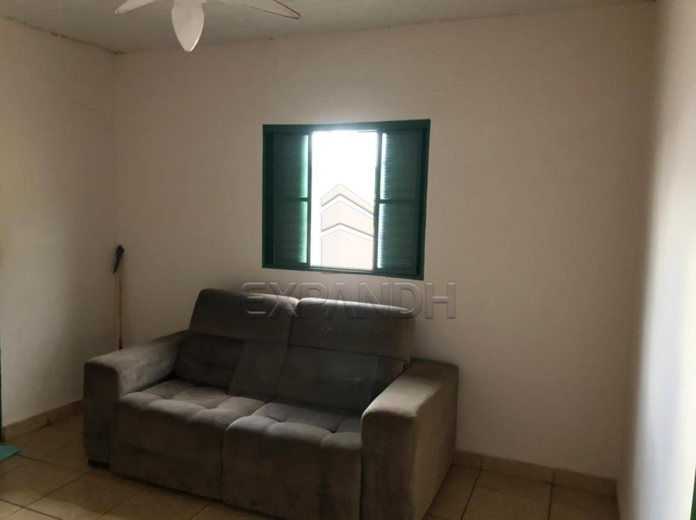 Alugar Casas / Padrão em Sertãozinho R$ 800,00 - Foto 6
