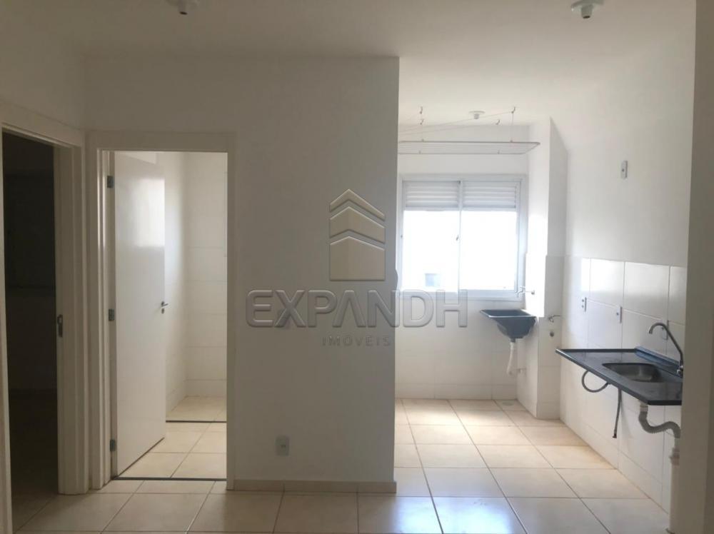 Alugar Apartamentos / Padrão em Sertãozinho R$ 550,00 - Foto 11