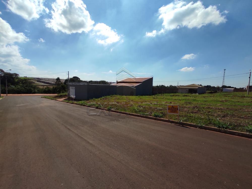 Comprar Terrenos / Padrão em Cruz das Posses R$ 64.000,00 - Foto 3