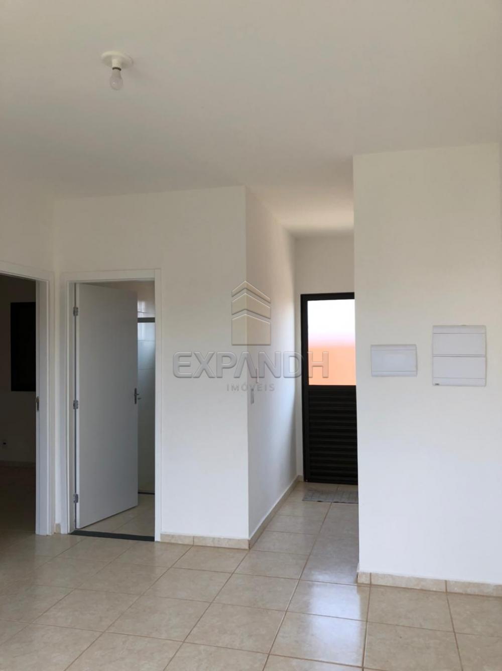 Alugar Casas / Padrão em Sertãozinho R$ 850,00 - Foto 3