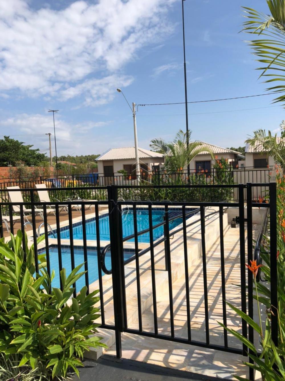 Alugar Casas / Padrão em Sertãozinho R$ 850,00 - Foto 16