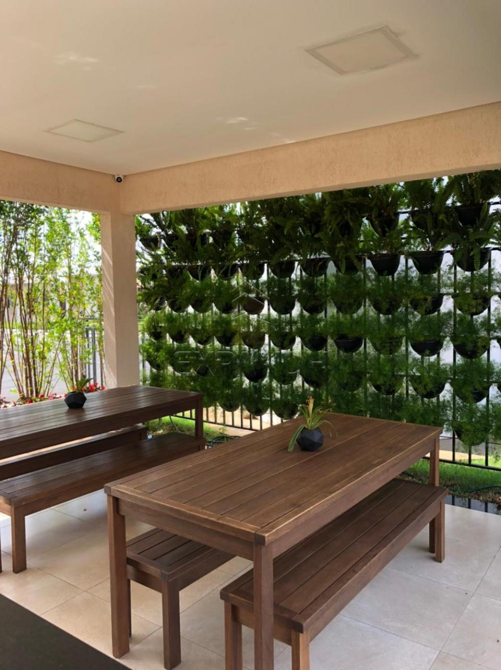 Alugar Casas / Padrão em Sertãozinho R$ 850,00 - Foto 21