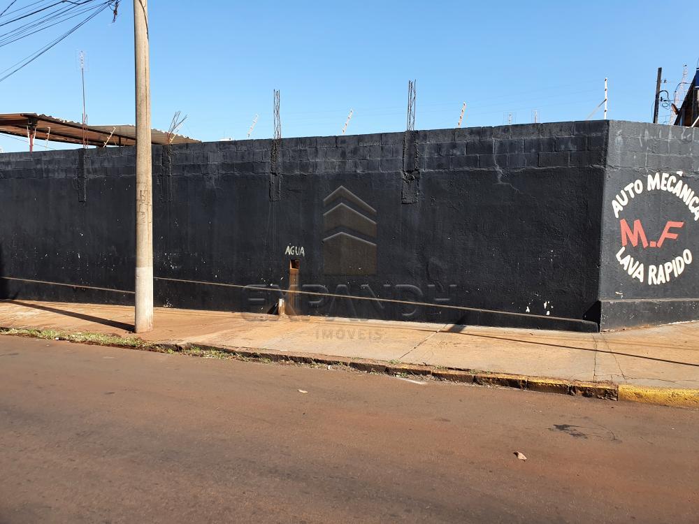 Comprar Comerciais / Barracão em Sertãozinho R$ 200.000,00 - Foto 2