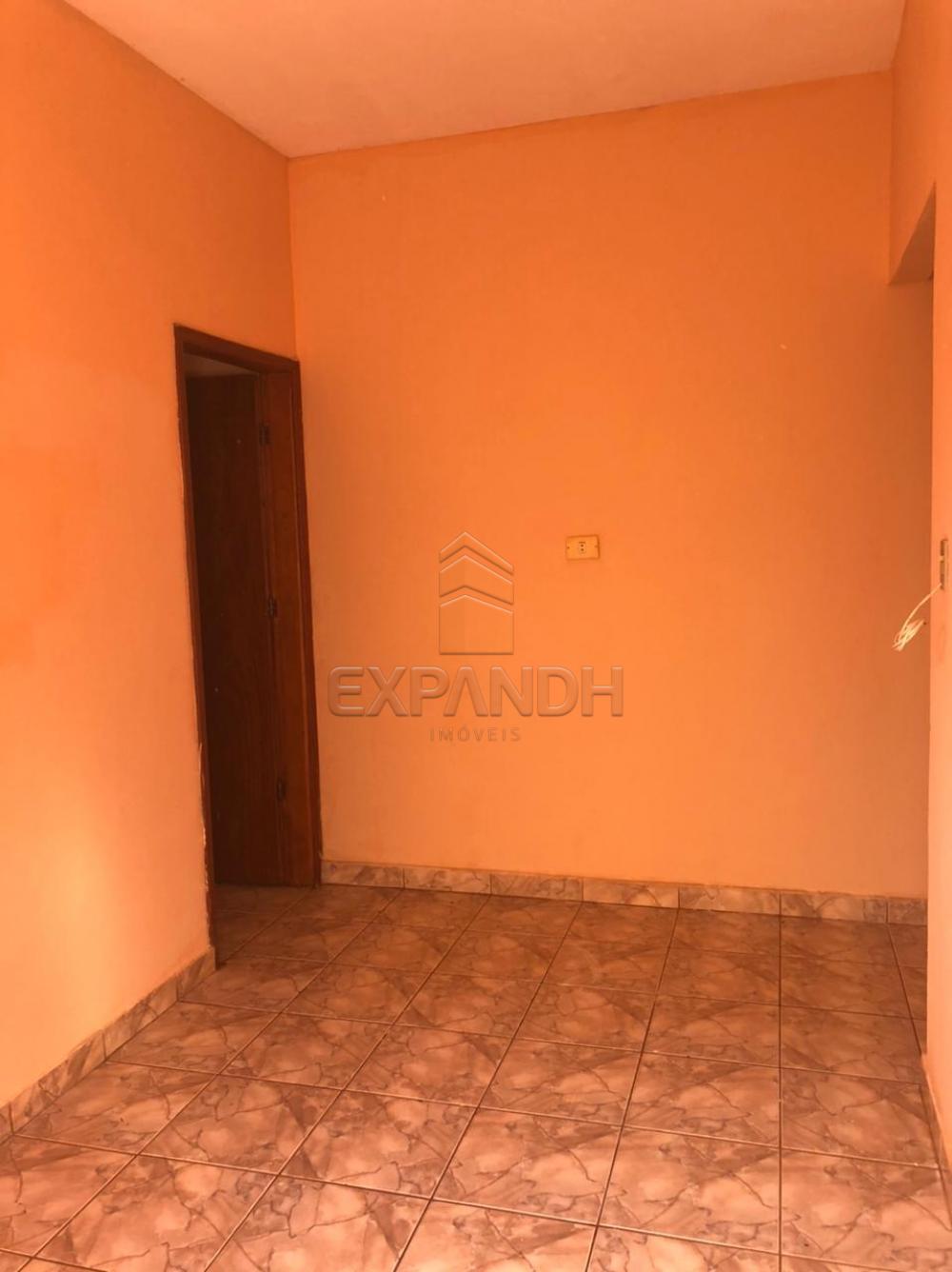 Alugar Casas / Padrão em Sertãozinho R$ 600,00 - Foto 5