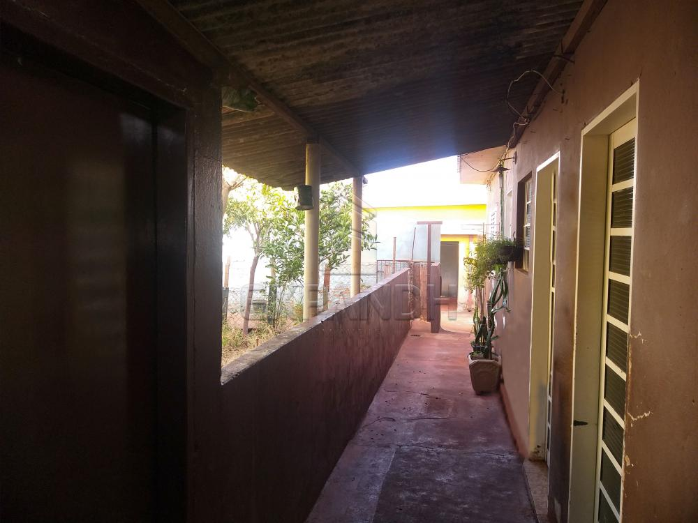 Comprar Casas / Padrão em Sertãozinho R$ 495.000,00 - Foto 6