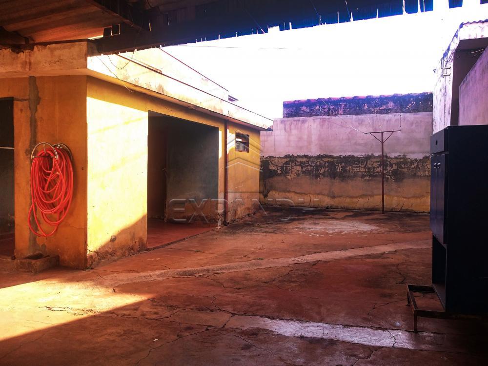Comprar Casas / Padrão em Sertãozinho R$ 495.000,00 - Foto 21