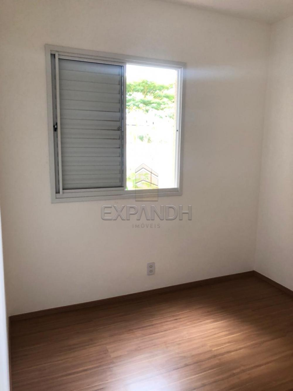 Alugar Apartamentos / Padrão em Sertãozinho R$ 750,00 - Foto 8