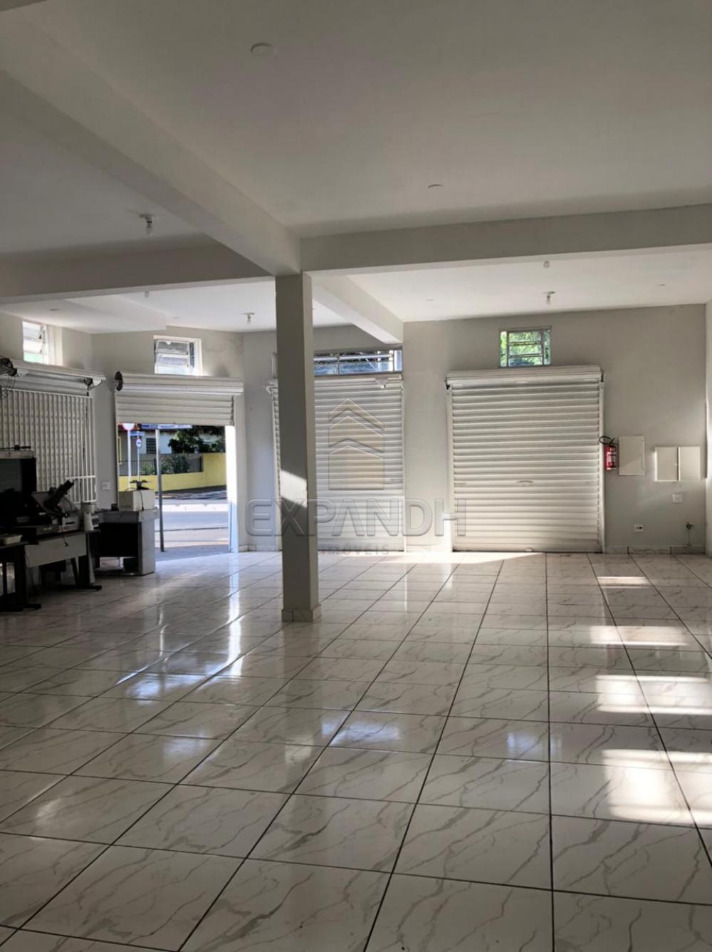 Alugar Casas / Padrão em Sertãozinho R$ 8.000,00 - Foto 3