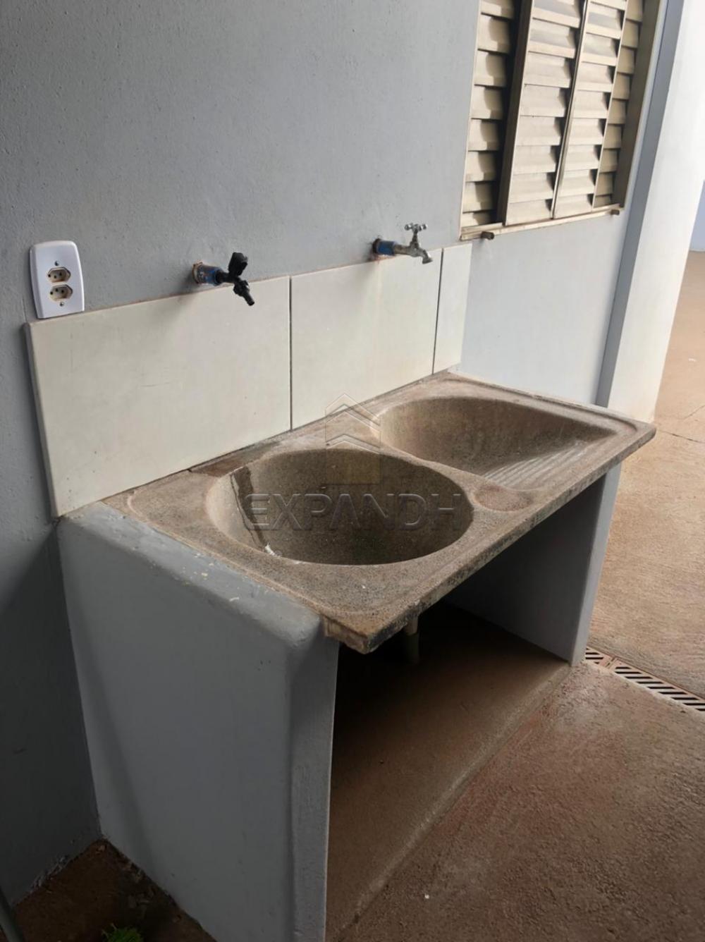 Alugar Casas / Padrão em Sertãozinho R$ 750,00 - Foto 15