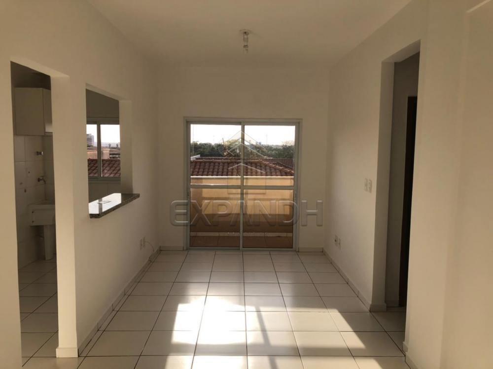 Alugar Apartamentos / Padrão em Sertãozinho R$ 850,00 - Foto 2