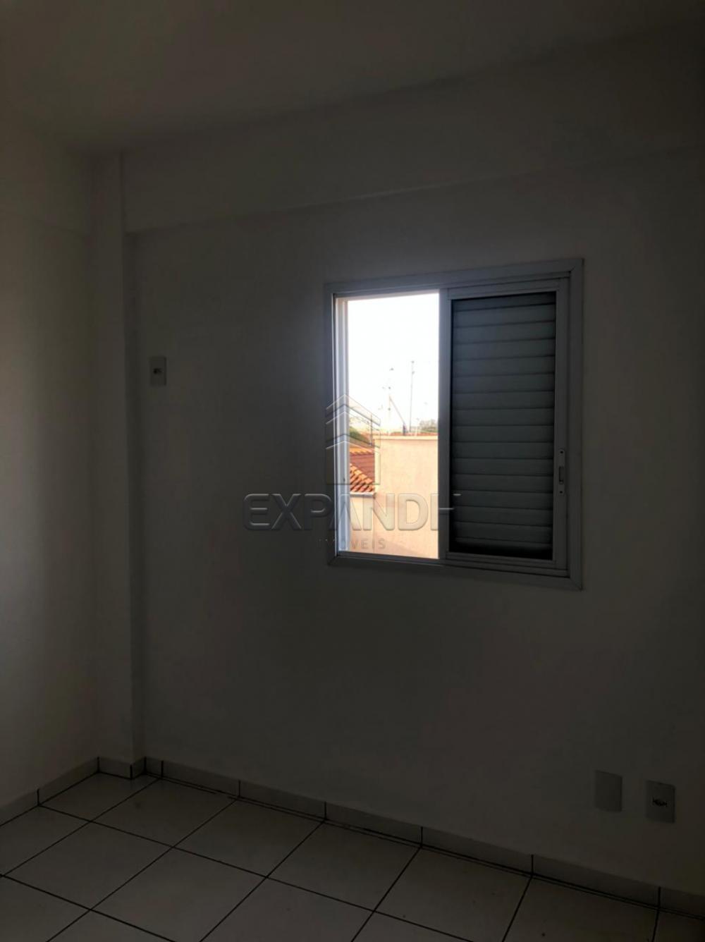 Alugar Apartamentos / Padrão em Sertãozinho R$ 850,00 - Foto 10