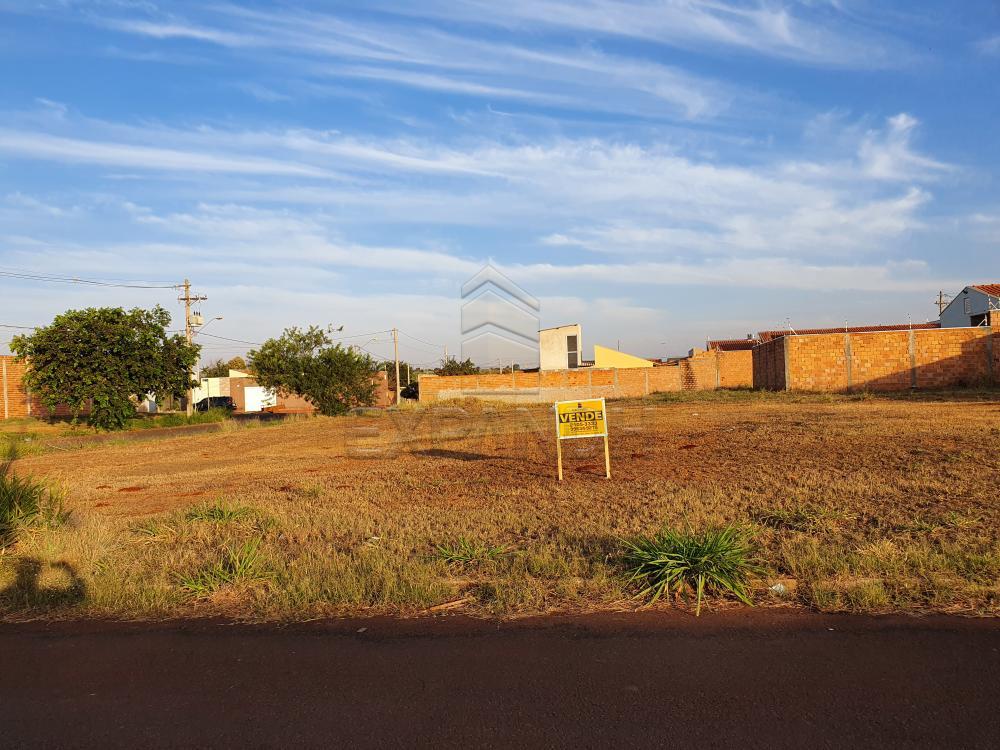 Comprar Terrenos / Padrão em Sertãozinho R$ 120.000,00 - Foto 1