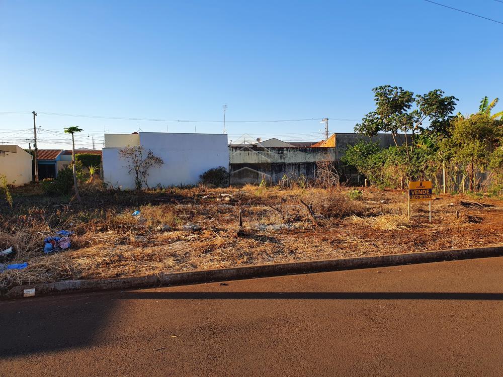 Comprar Terrenos / Padrão em Sertãozinho R$ 250.000,00 - Foto 1