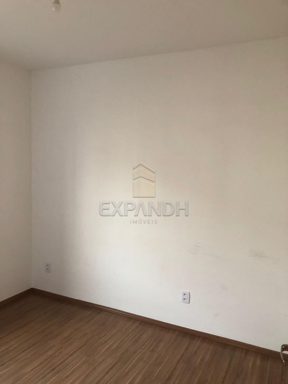 Alugar Apartamentos / Padrão em Sertãozinho R$ 800,00 - Foto 14