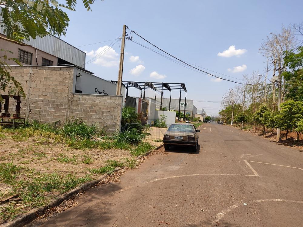 Comprar Terrenos / Industriais em Sertãozinho R$ 260.000,00 - Foto 4