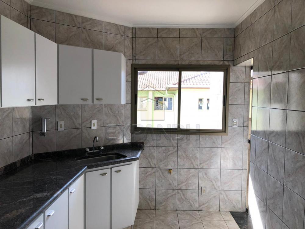 Alugar Apartamentos / Padrão em Sertãozinho R$ 1.728,00 - Foto 6
