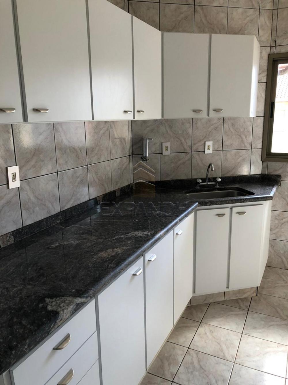 Alugar Apartamentos / Padrão em Sertãozinho R$ 1.728,00 - Foto 8