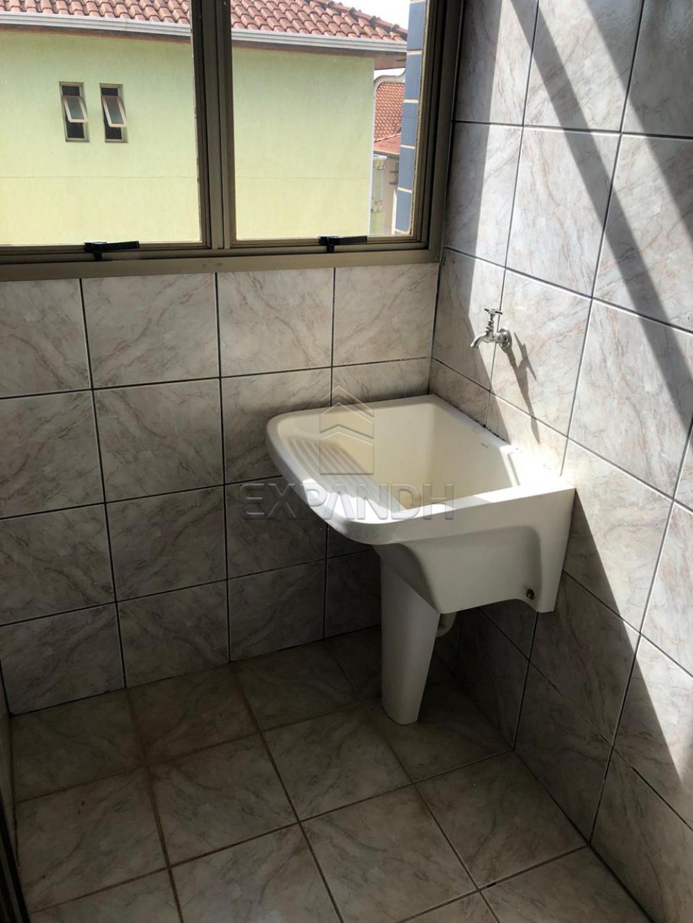 Alugar Apartamentos / Padrão em Sertãozinho R$ 1.728,00 - Foto 9