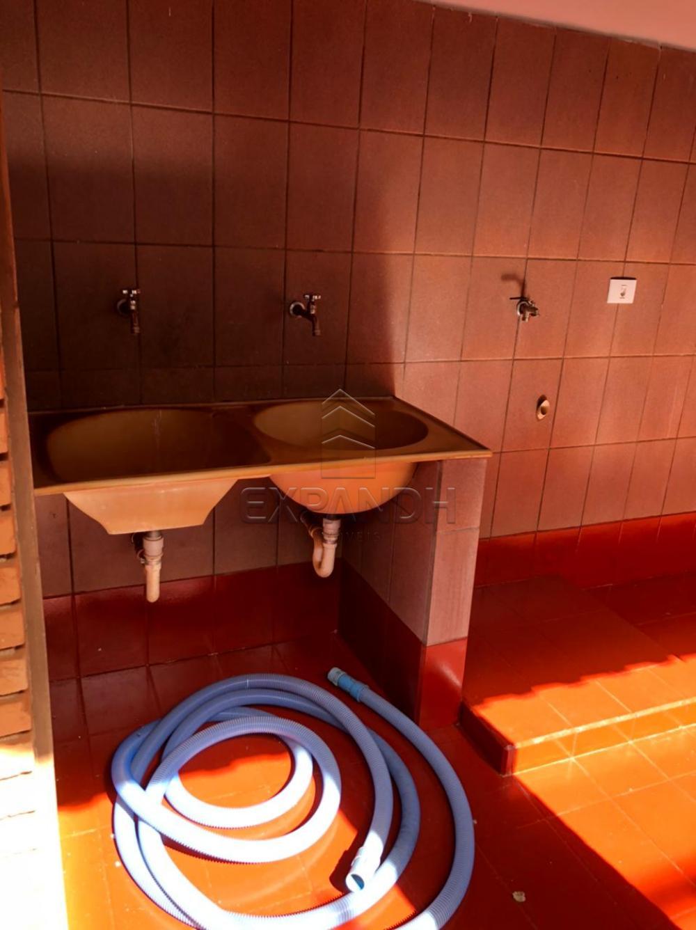 Alugar Casas / Padrão em Sertãozinho R$ 2.700,00 - Foto 30