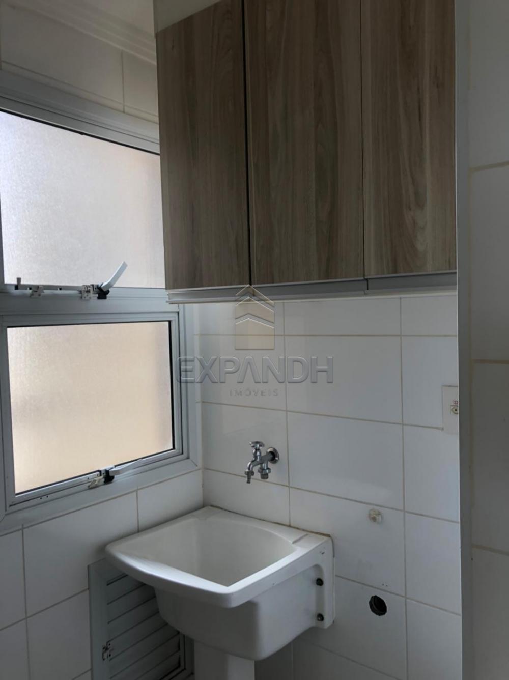 Alugar Apartamentos / Padrão em Sertãozinho apenas R$ 1.250,00 - Foto 7