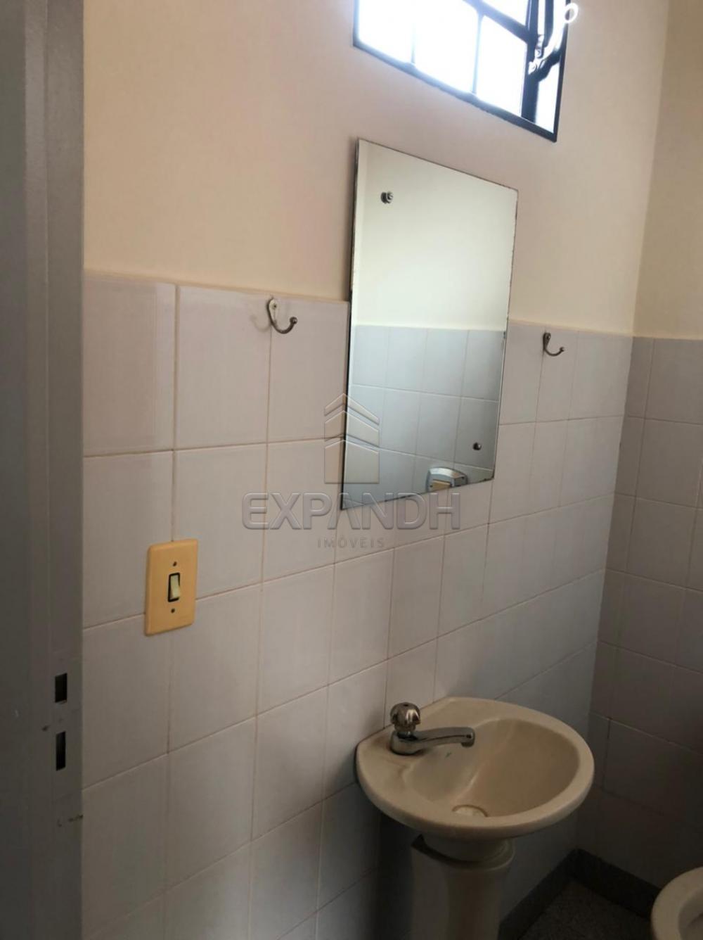 Alugar Comerciais / Sala em Sertãozinho R$ 800,00 - Foto 4
