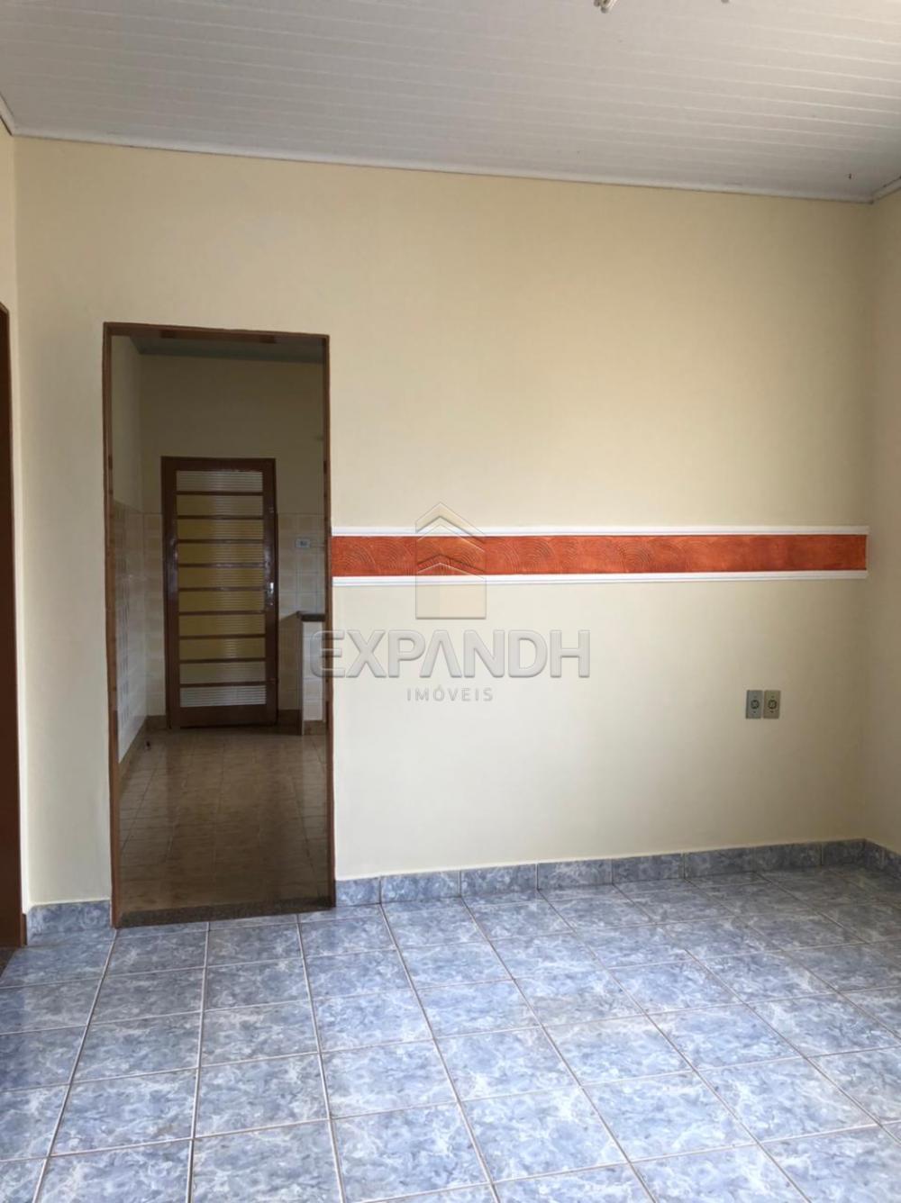 Alugar Casas / Padrão em Sertãozinho R$ 925,00 - Foto 3