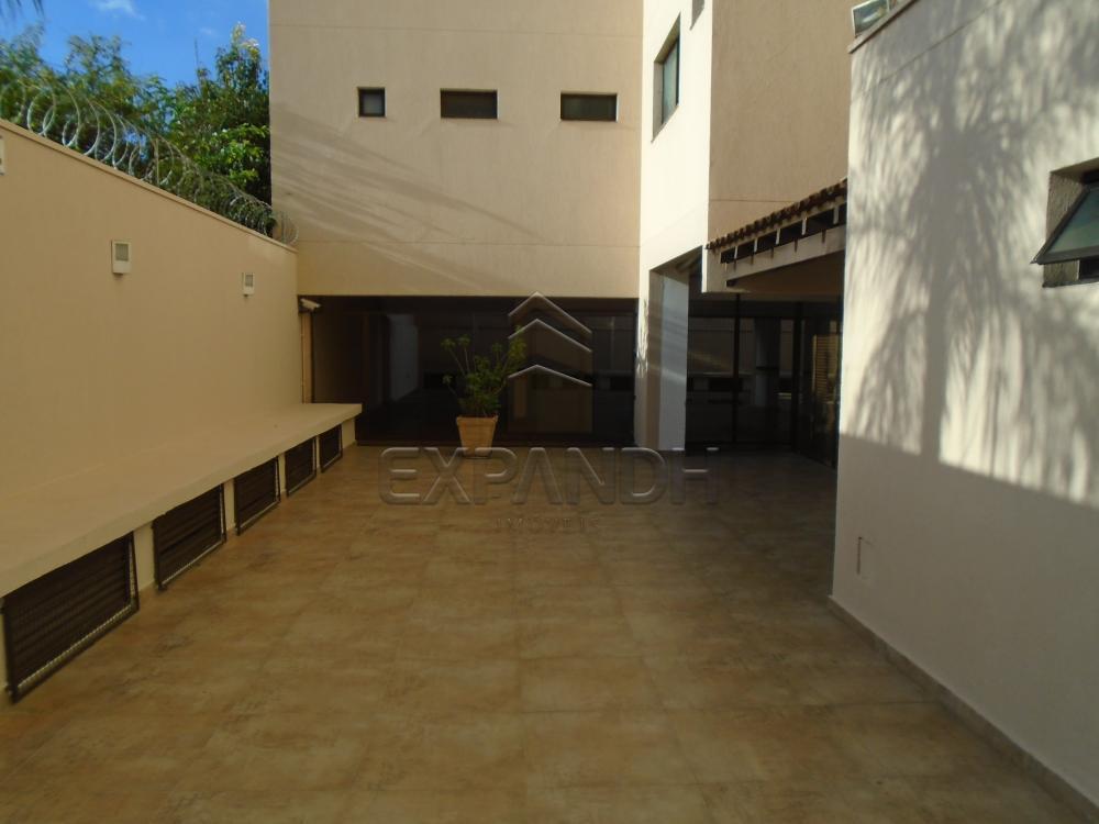 Alugar Apartamentos / Padrão em Sertãozinho R$ 1.355,00 - Foto 8