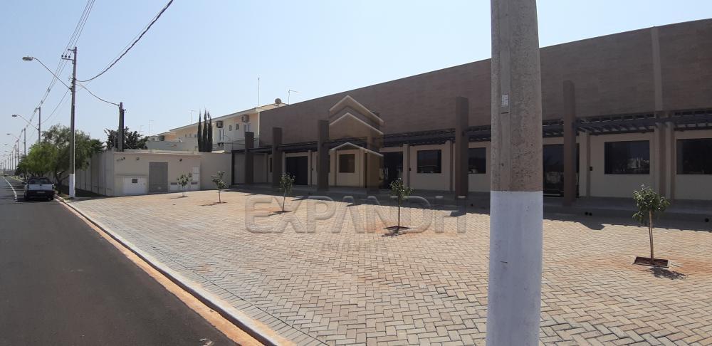 Alugar Comerciais / Sala em Sertãozinho apenas R$ 2.500,00 - Foto 26