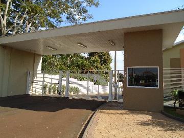 Alugar Casas / Condomínio em Sertãozinho R$ 1.250,00 - Foto 2