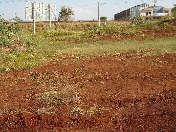 Alugar Terrenos / Padrão em Sertãozinho. apenas R$ 350.000,00
