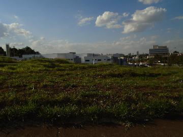 Alugar Terrenos / Padrão em Sertãozinho. apenas R$ 381.285,00