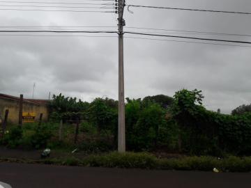 Alugar Terrenos / Área em Sertãozinho. apenas R$ 1.505,00