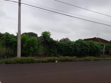 Alugar Terrenos / Área em Sertãozinho R$ 1.505,00 - Foto 3
