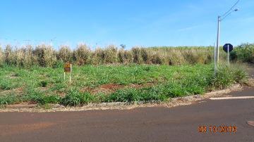 Comprar Terrenos / Padrão em Sertãozinho R$ 130.000,00 - Foto 1