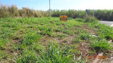 Comprar Terrenos / Padrão em Sertãozinho R$ 130.000,00 - Foto 5