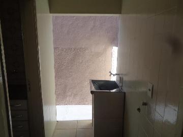 Alugar Casas / Padrão em Sertãozinho R$ 855,00 - Foto 12