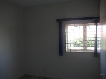 Alugar Comerciais / Salão em Sertãozinho R$ 805,00 - Foto 10