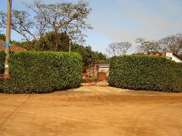 Sertaozinho Chacaras Recreio dos Pa Comercial Locacao R$ 6.502,70 5 Dormitorios  Area do terreno 4000.00m2