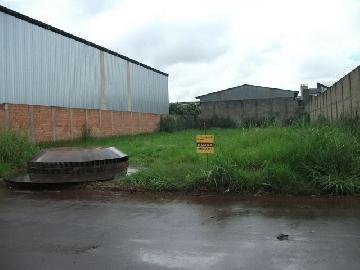 Sertaozinho Distrito Industrial Terreno Locacao R$ 2.679,70  Area do terreno 1065.53m2