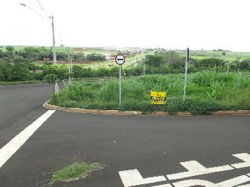 Alugar Terrenos / Padrão em Sertãozinho. apenas R$ 104.000,00