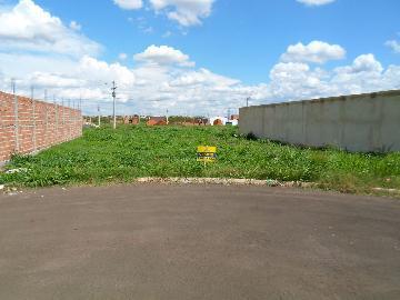 Comprar Terrenos / Padrão em Sertãozinho R$ 135.000,00 - Foto 3