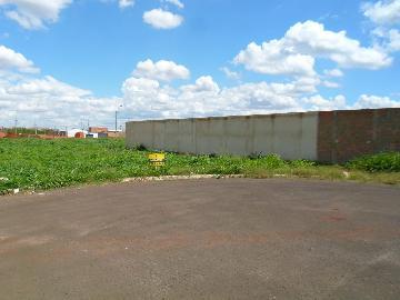 Comprar Terrenos / Padrão em Sertãozinho R$ 135.000,00 - Foto 4