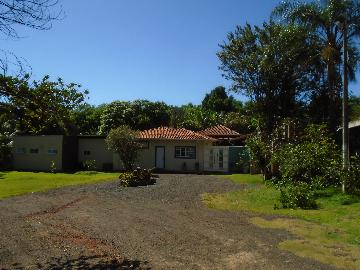 Alugar Rurais / Chácara em Sertãozinho R$ 3.850,00 - Foto 5