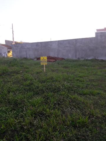 Alugar Terrenos / Padrão em Sertãozinho. apenas R$ 106.345,80